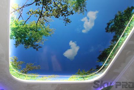 Натяжные потолки с фотопечатью фото небо